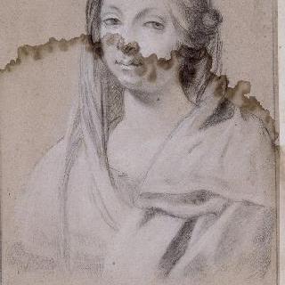 비르지니아 다 베조의 초상, 시몽 부에의 부인
