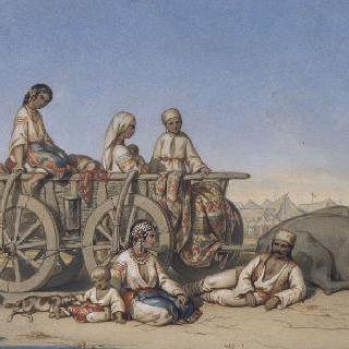 터키식으로 소를 매어 놓고 휴식