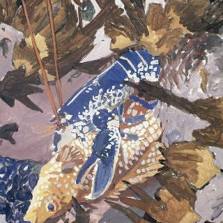 물고기와 갑각류