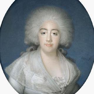 마리 조제프 드 사부아의 초상 (1753 -1810), 프로방스 백작부인