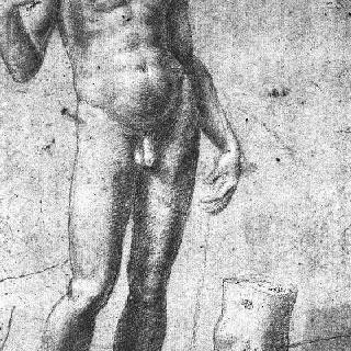 정면을 향해 서 있는 머리가 없는 나체 남자, 발에 대한 습작