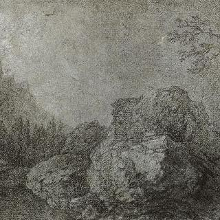 나무 숲과 바위가 있는 풍경