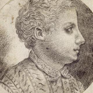 오른쪽을 향한 프로필 모습으로 본 젊은 남자의 두상