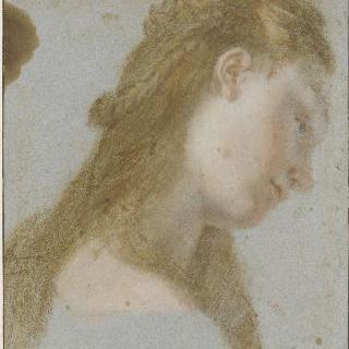 오른쪽을 향한 돌려진 프로필로 본 젊은 여자 두상