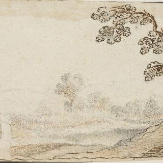 오른 쪽의 나무와 왼쪽의 벽이 있는 풍경
