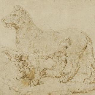 로물루스와 레무스에게 젖을 먹이는 암늑대