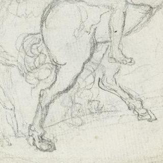 1791년의 프랑스와 나바르 왕 루이 16세 (1754-1794)의 프로필