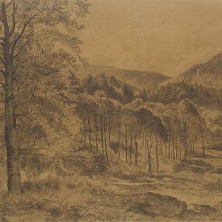 풍경 : 보쥬 지방 르투르느메르 골짜기 안쪽