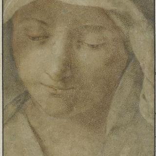 베일로 덮인 여인의 두상