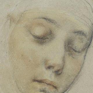 수녀 시에누아즈 파실레아 크로기의 초상