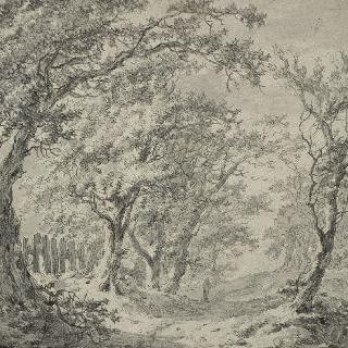 떡갈나무숲