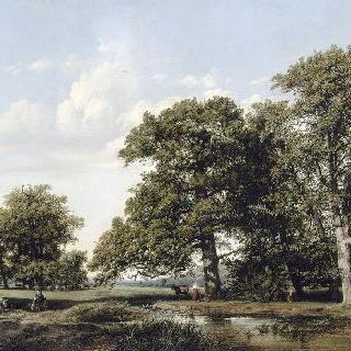 커다란 떡갈나무들이 있는 풍경
