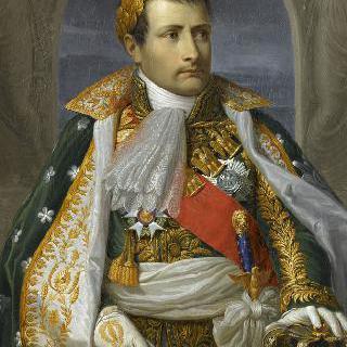 나폴레옹 1세, 이탈리아의 왕
