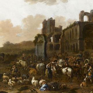 가축 시장