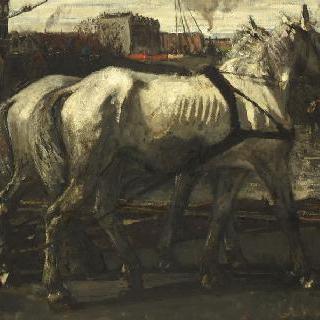 암스테르담에서 말뚝을 끄는 두 마리의 흰색 말