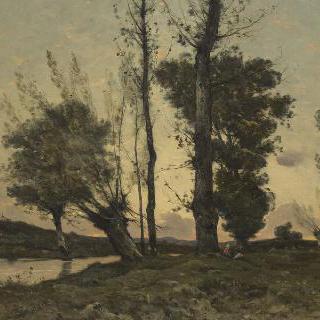 큰 나무들과 개울이 있는 풍경