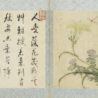 꽃들과 벌레들