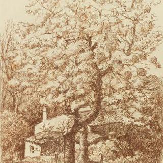 폴리의 봄, 낭트의 거리