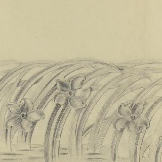 나르시스 가로장의 스케치