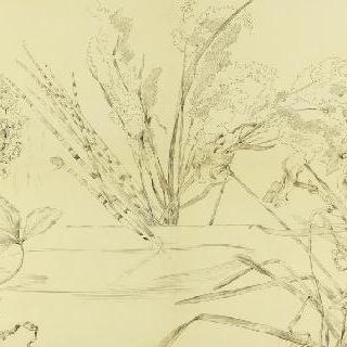 대형 꽃장식이 있는 스케치