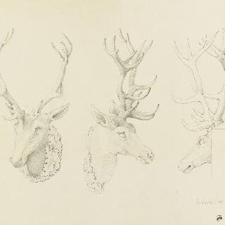 퐁텐블로 성의 사슴의 머리