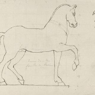 국립 박물관 (나폴리) : 레지나에서 온 말