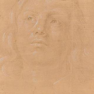 젊은 남자의 얼굴
