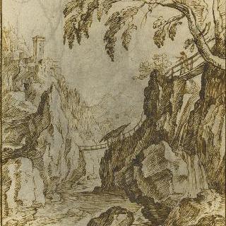 바위 협곡의 급류