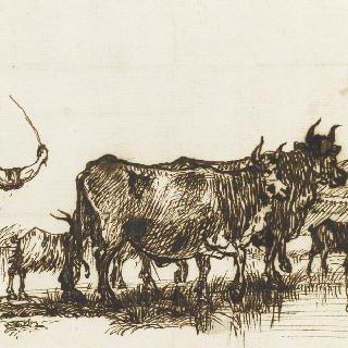 두 마리의 소와 세 마리 염소를 이끄는 목동