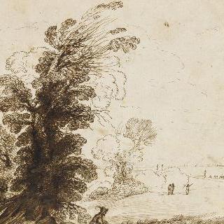나무 사이로 가려져 있는 교회가 있는 풍경