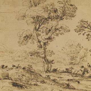 두 그루의 큰 나무를 향하여 가는 남자가 있는 풍경