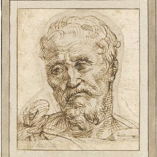턱수염 난 남자의 얼굴 : 미켈란젤로의 초상