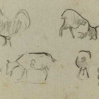 수탉의 크로키, 염소의 네 개의 습작, 동물의 발들