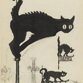 검은 고양이들 위에 올려진 표시들의 다양한 습작