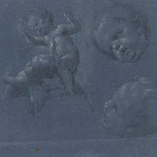 아기 천사의 네 개의 습작