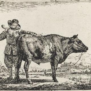 목동과 황소