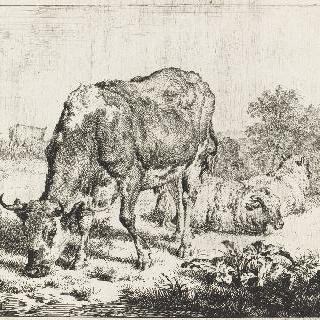 소, 까치, 세 마리의 양들