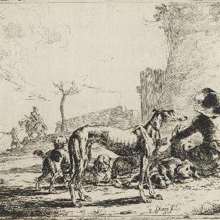 남자와 네 마리의 개