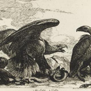 독수리들과 그리퐁들