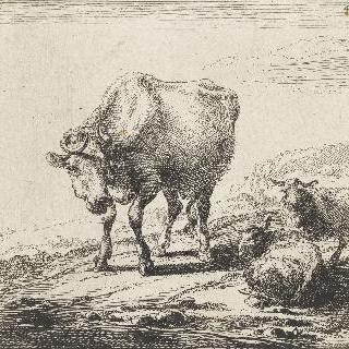우유 짜는 여인과 암소들