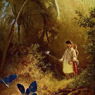 나비 사냥꾼
