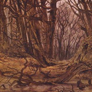 늦가을 숲 (숲 속 개울, 가을 숲)