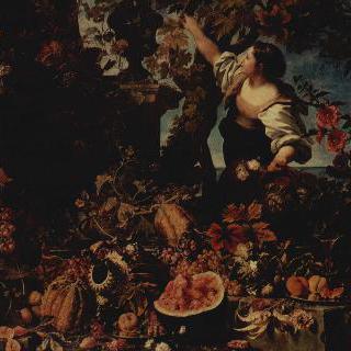 꽃과 과일 이미지