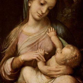 성모와 아기 예수 (Madonna Campori) : 성모
