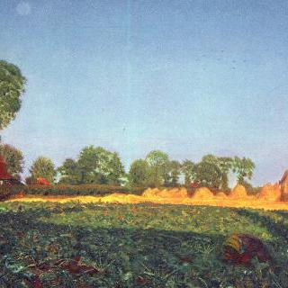 곡물 수확 때
