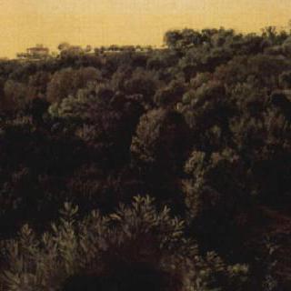 키지 공원의 궁전