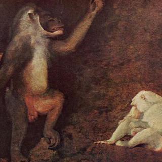 비비원숭이와 백변종 마카크원숭이