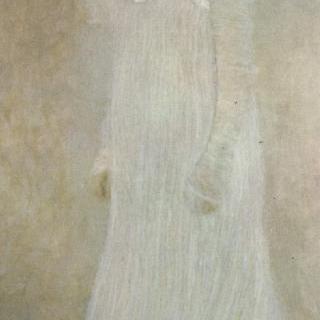 세레나 레더러의 초상