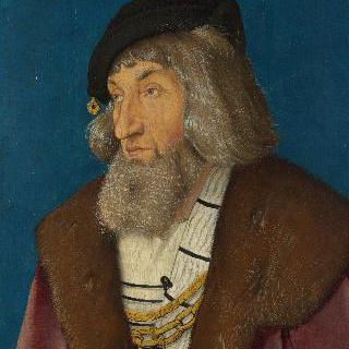 수염 기른 남자의 초상