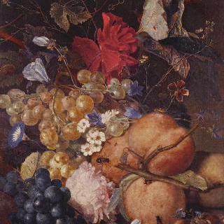 과일과 꽃과 곤충